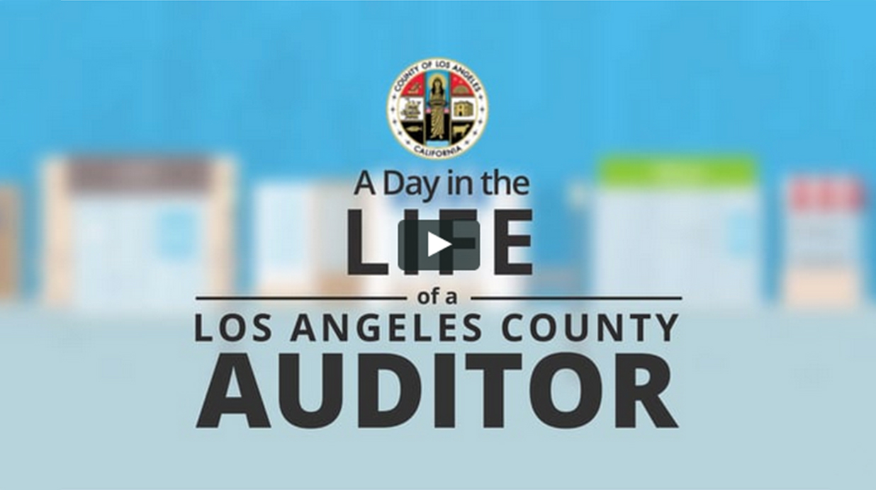 A Day in the life of a Auditor